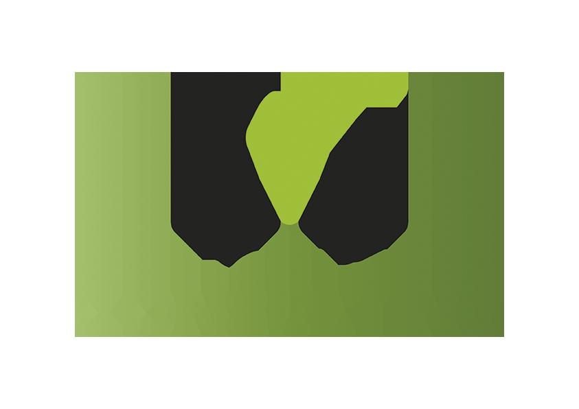 MConsulting Safor Asesoría Empresarial SL